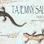 muzeum-mesta-duchcova-tajemny-salamandr-duchcov-2006-2016